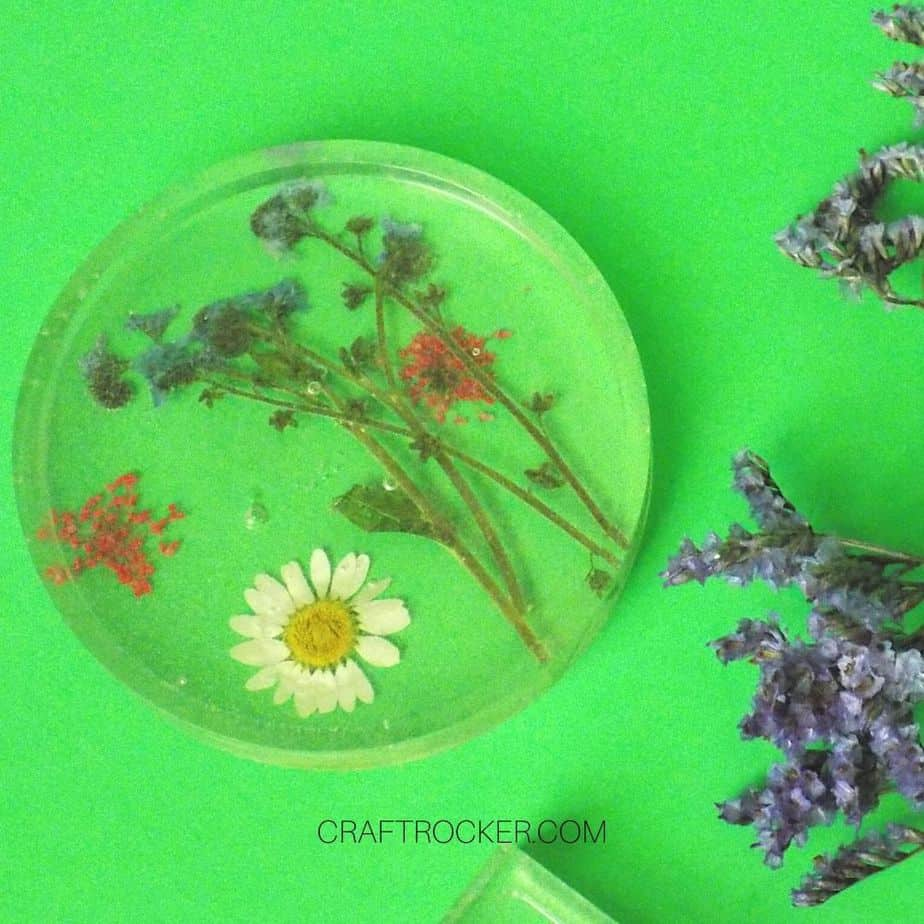 Close Up of Circle Pressed Flower Resin Coaster next to Flowers - Craft Rocker