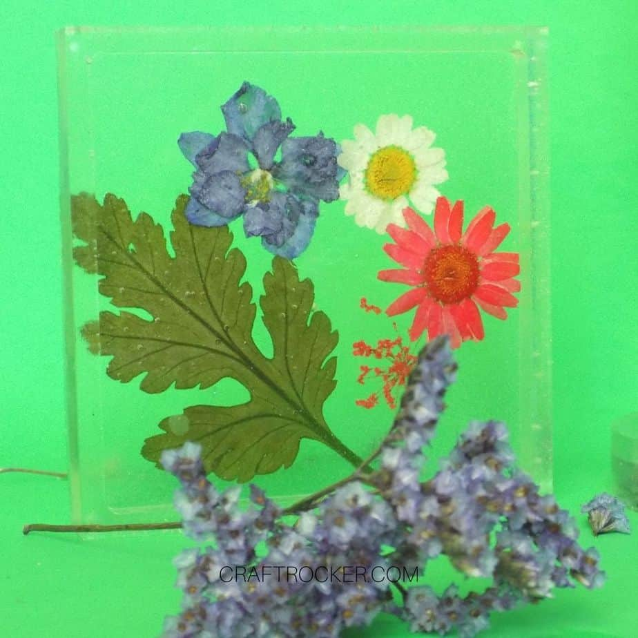 Close up of Square Pressed Flower Resin Coaster - Craft Rocker