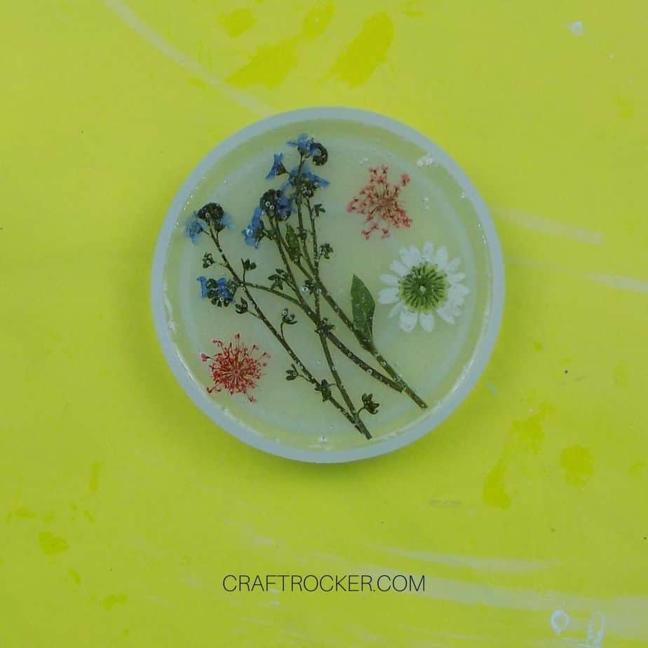 Pressed Flowers Arranged in Partially Filled Coaster Mold - Craft Rocker