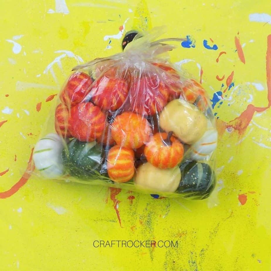 Bag of Mini Pumpkins - Craft Rocker