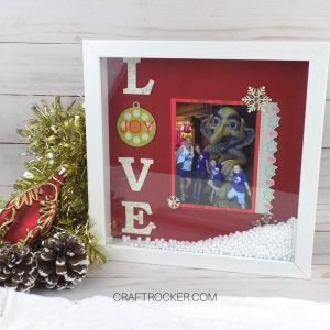 Snow Globe Shadow Box on Wood Background - Craft Rocker