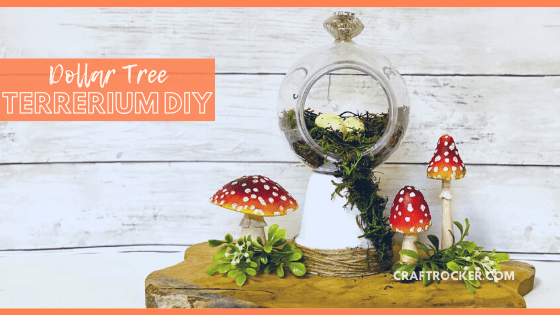 Close Up of Decorative Moss Terrarium next to Mushrooms with text overlay - Dollar Tree Terrarium DIY - Craft Rocker