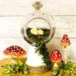 Close Up of Moss Terrarium next to Mushrooms and Greenery - Craft Rocker