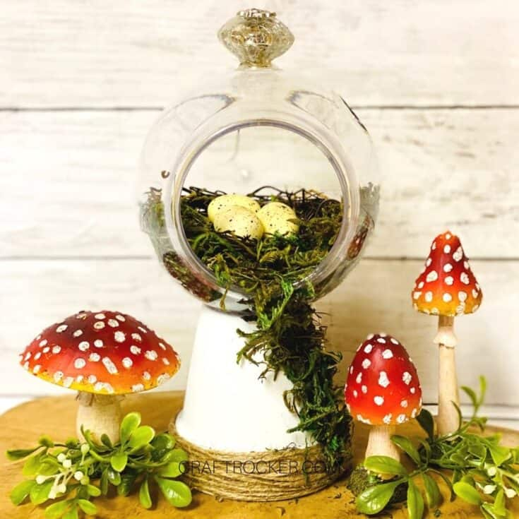 Close Up of Moss Terrarium next to Mushrooms and Greenery - Craft Rocker