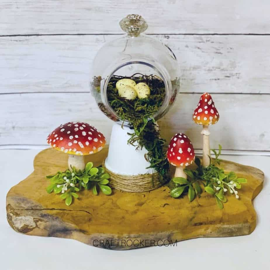 Moss Terrarium next to Mushrooms and Greenery - Craft Rocker