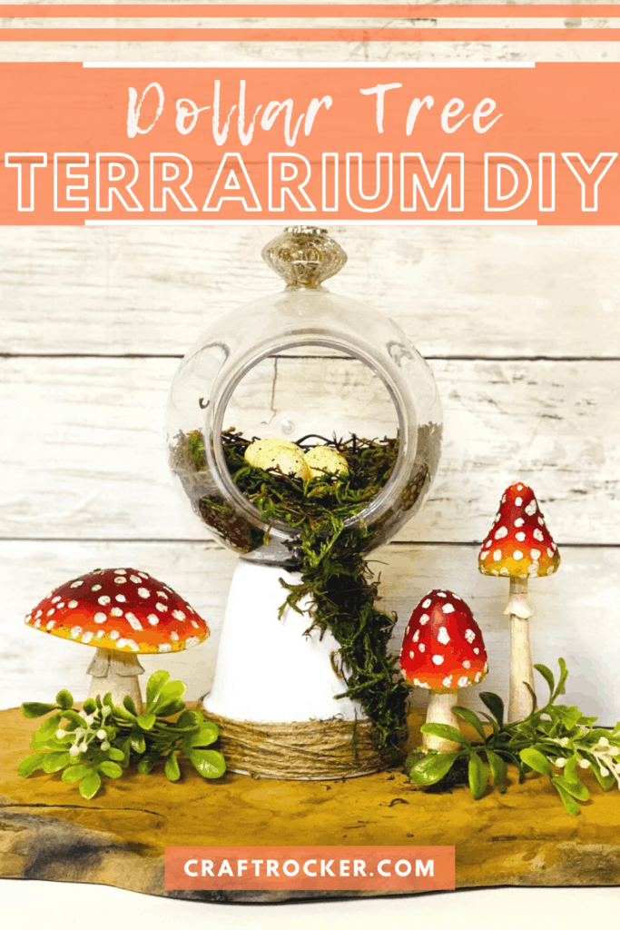 Moss Terrarium next to Mushrooms with text overlay - Dollar Tree Terrarium DIY - Craft Rocker