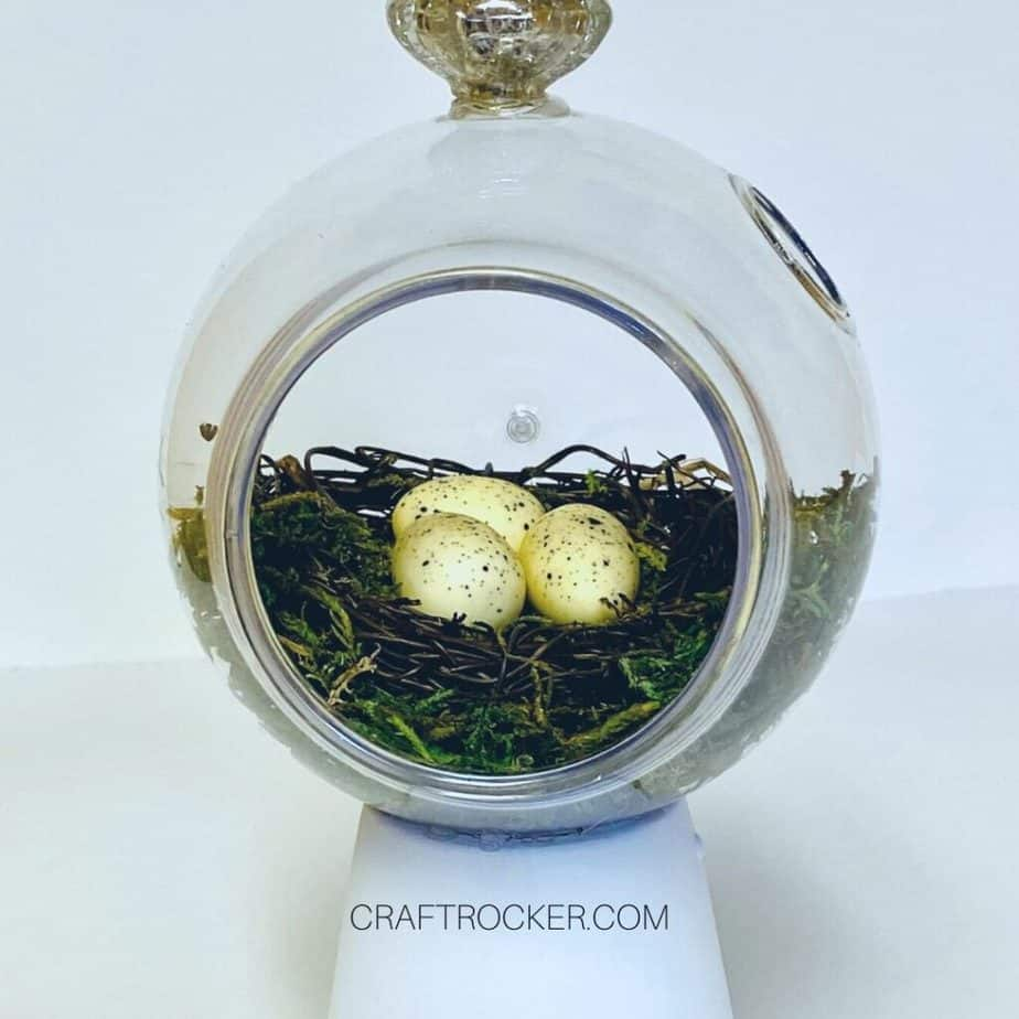 Moss and Mini Nest with Eggs inside Terrarium - Craft Rocker